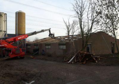 Nieuw dak op veeschuur in Nijbroek